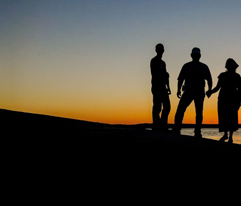 silhouette of family with young adult children